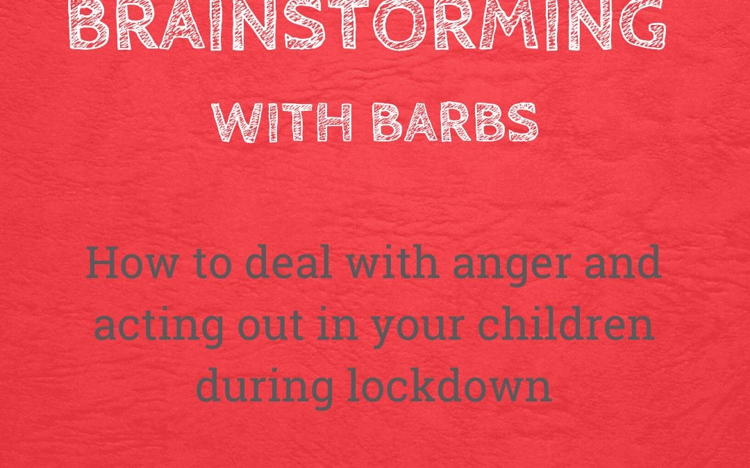 Brainstorming With Barbs in Lockdown – Dealing With Anger